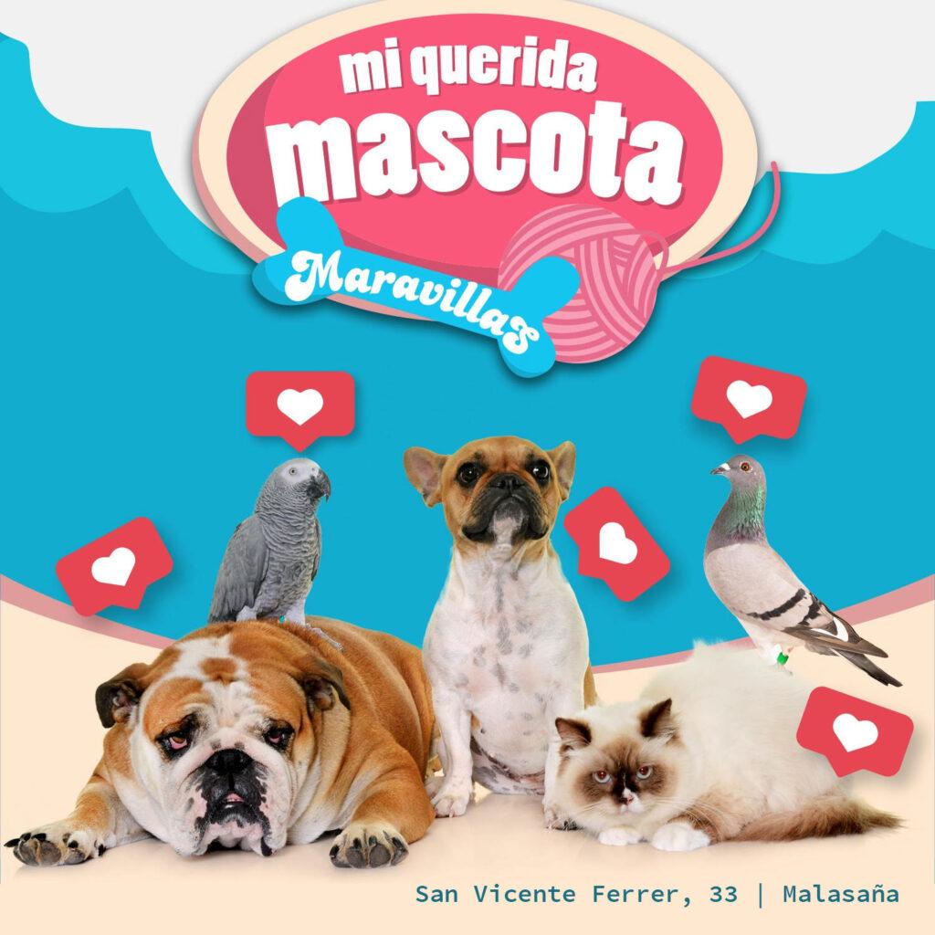 Esta semana celebraremos Mi Querida Mascota, un concurso en el que tu mascota es el o la  protagonista!